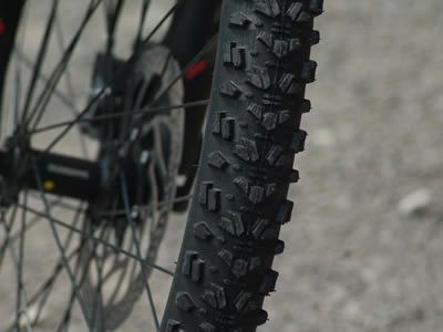 Ruota di mountain bike